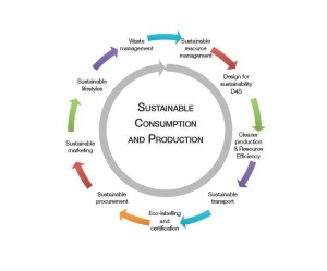 Sustainable Concumtion Production