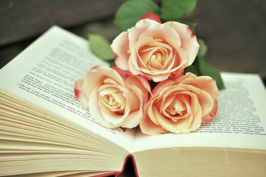 book-1771073_1280